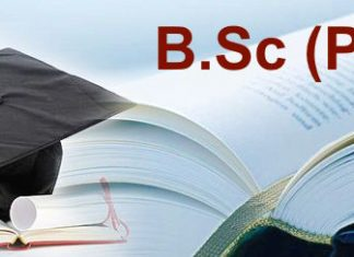 Career after BSc (PCM/PSM)