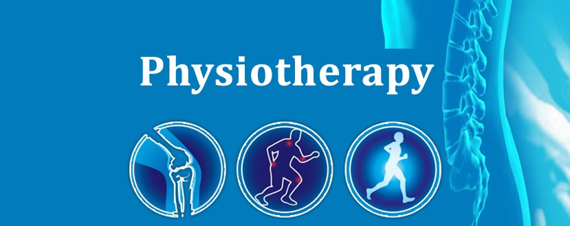 Physiotherapist Doctor