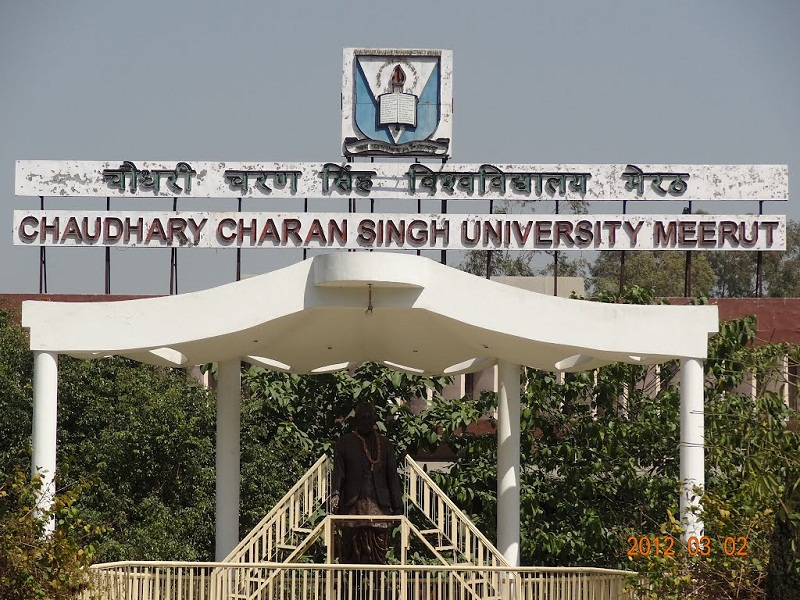 BA law degree from CCS University